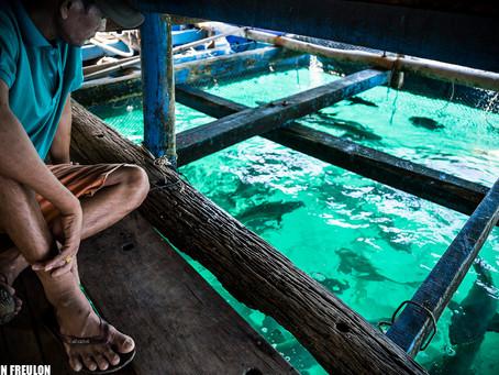 Nam Du Island et ses élevages en mer