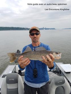 Guide de pêche professionnel