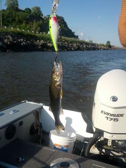 excursion de pêche