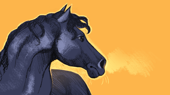yellow horse.png