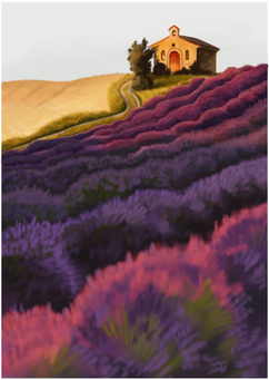 lavender field.png