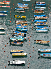"""""""Dots & Dashes,"""" The Harbor at Vernazza"""