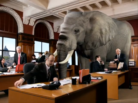 The Cyber-Security Elephant in the Room