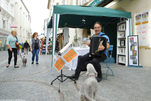 Straßenmusik10.jpg