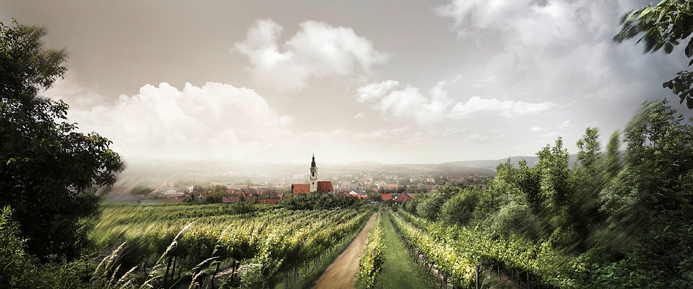 Langenlois - Kultur und Wein