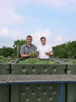 Weingut-Tuerk-Verjus-8211-Franz-und-Alex