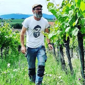 Alex im Weingarten