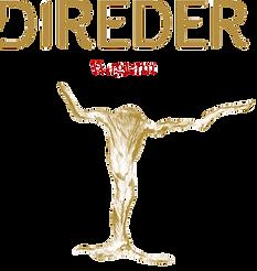 Direder_Logo%2BWagram_edited.png