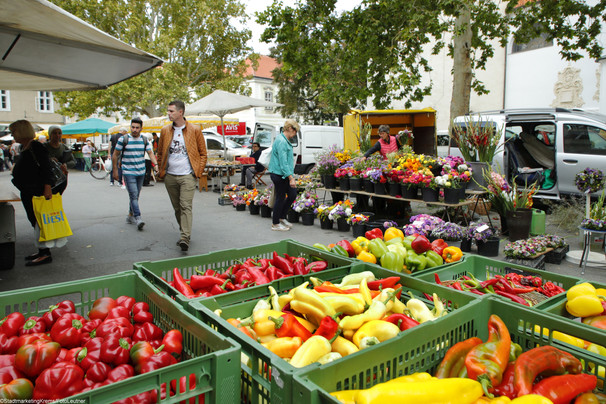 Markt Pfarrplatz6.jpg