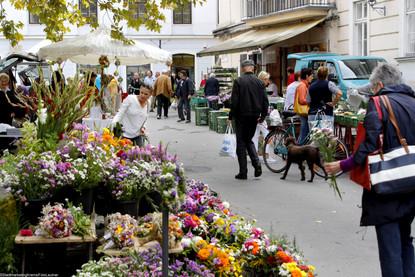 Markt Pfarrplatz8.jpg