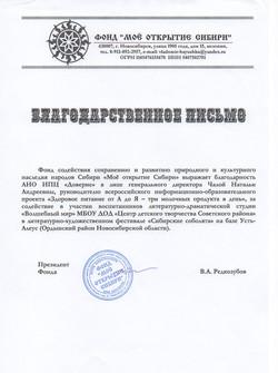 Новосибирск 2016 год