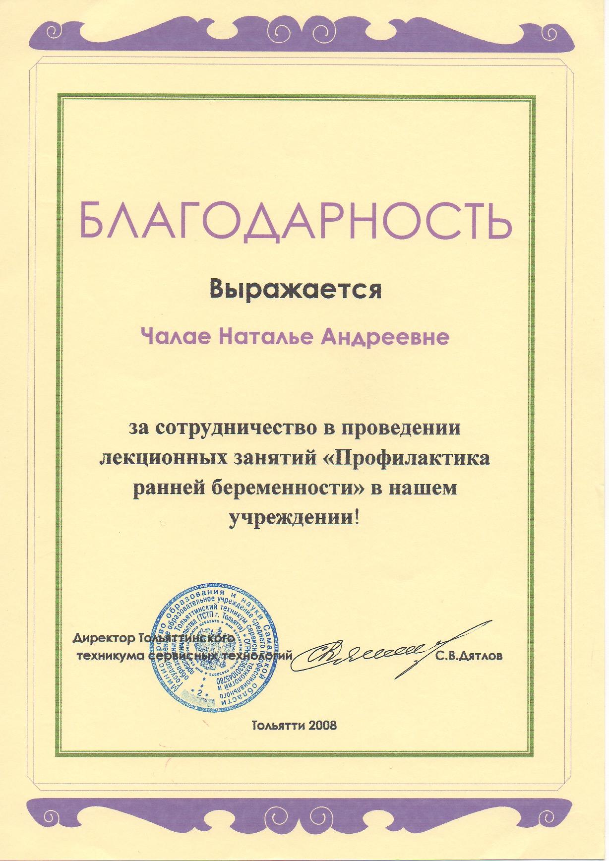 Тольятти 2008 год