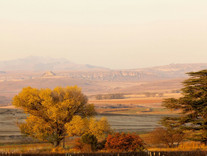 Autumn view from the Vineyard