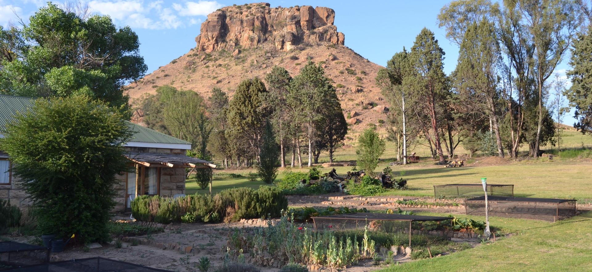 Vege Garden Cottage view
