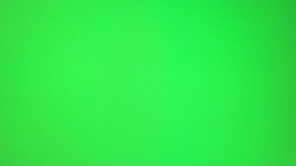 GREEN SCREEN background.jpg