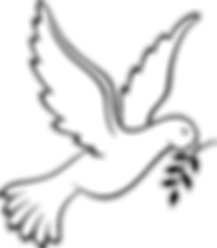Dove 1.png