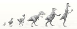 От птенца до динозавра