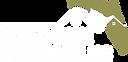 Logo_1 (2).png