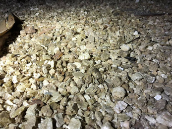 Dangers of vermiculite Insulation