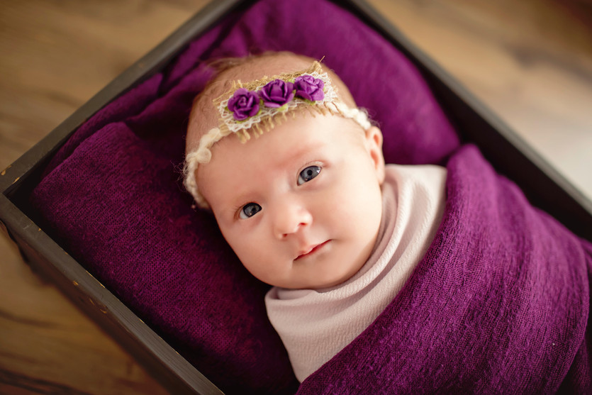 Amelia's Newborn Session