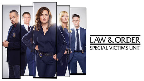 law and order svu poster.jpg
