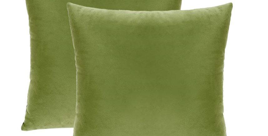 Olive Green-029