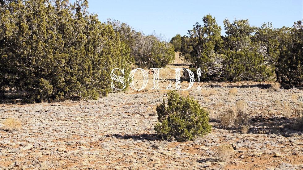 1.07 Acres - PARK SHOW LOW UNIT 6 LOT: 2557, CONCHO, AZ
