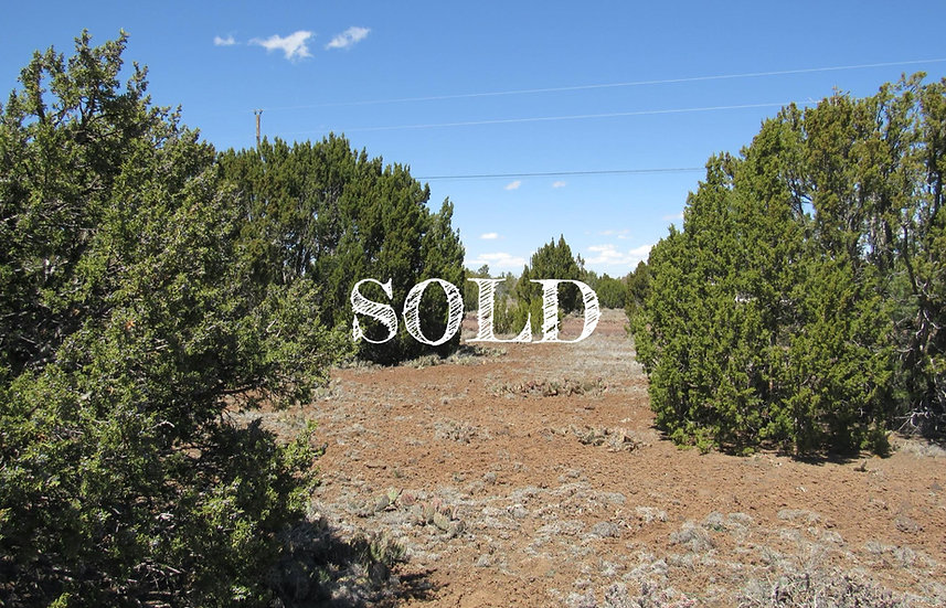 1.16 Acres in Concho - Show Low Pines 10