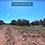 Thumbnail: 1.16 Ac - SHOW LOW PINES UNIT 3 Lot: 429, CONCHO, AZ