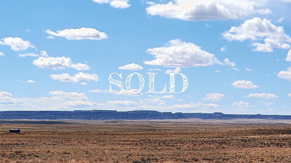 1.04 Acres - PETRIFIED FOREST ESTATES LOT: 245 - ADAMANA, AZ