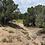 Thumbnail: 1.24 Ac - SHOW LOW PINES UNIT 7 Lot: 128, CONCHO, AZ