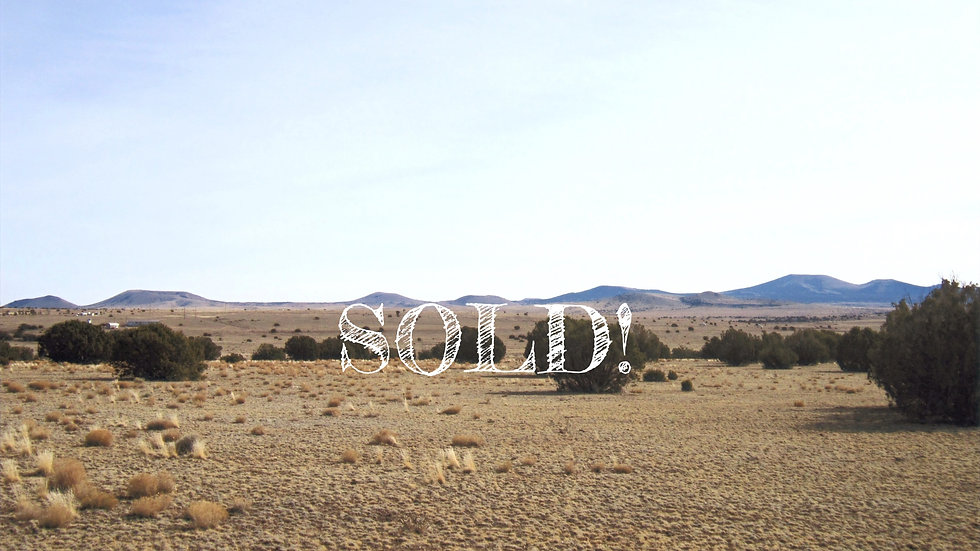2.12 Acres - SHOW LOW PARADISE UNIT 1 Lots: 367 & 368, CONCHO, AZ
