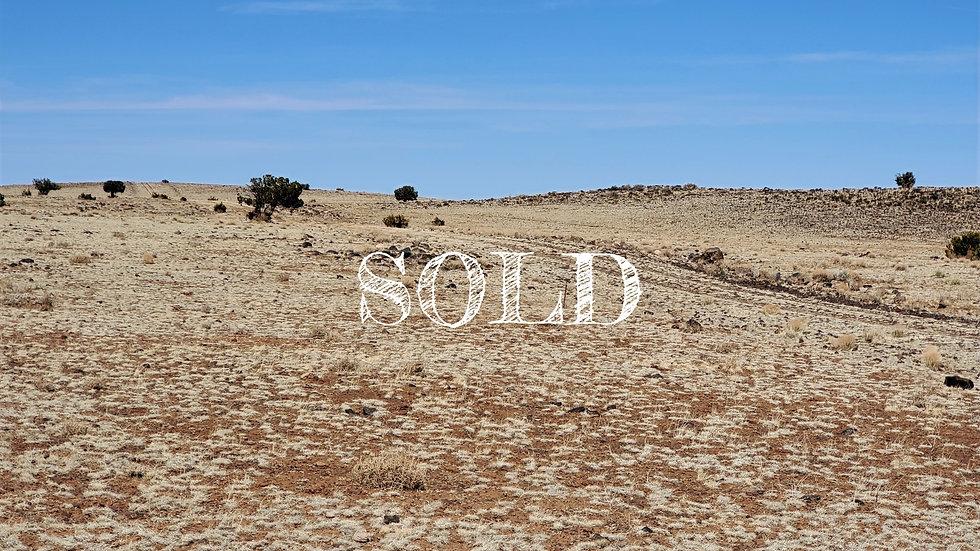 1.04 Acres - CONCHO VALLEY LOT:2 - CONCHO, AZ