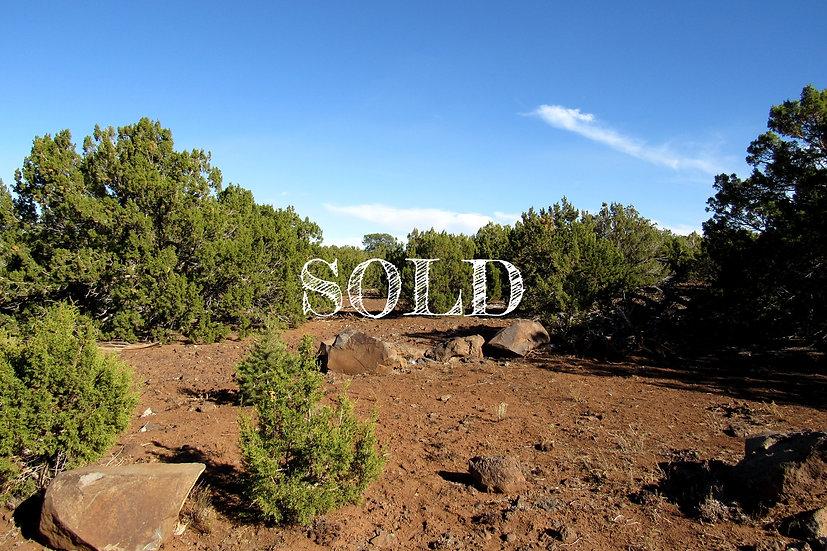 1.03 Acres - PARK SHOW LOW UNIT 6, Lot 2209 - VERNON, AZ