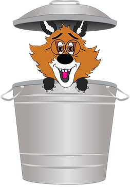 The Phonics Fox in a Dustbin
