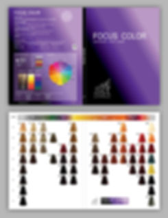 Focus Color Color Chart 2019 57 COLOURS.