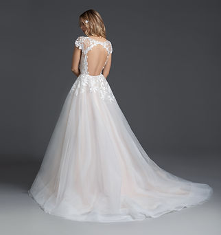 Blush by Hayley Paige Theo gown back view