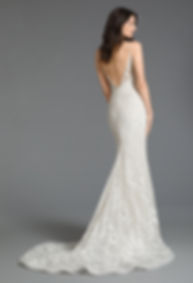 Tara Keely by Lazaro Style Sofia gown back view
