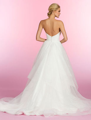 Hayley Paige Esther gown back view
