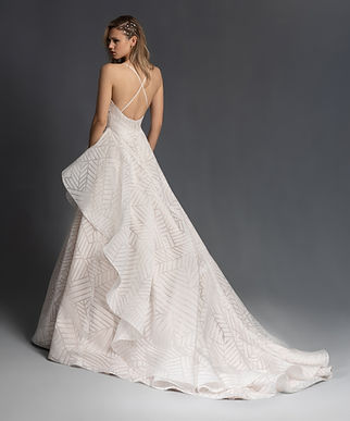 Hayley Paige Charles Gown back view