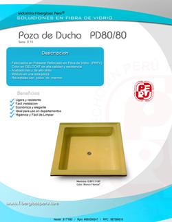 POZA DE DUCHA 80 80 15.jpg
