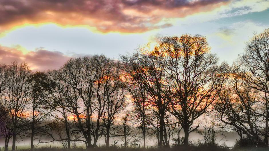 Sunset on a Misty Day