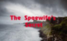 spacewife's secret-RED_edited.jpg