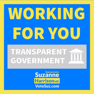 Transparent government.jpg