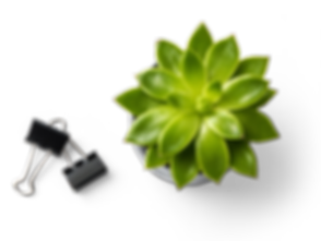 Succulent Plant and Binder Clips_edited_edited.png