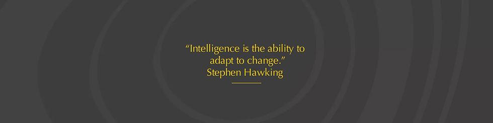 Hawking_banner.jpg