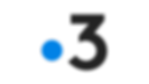 france_3_logo_rvb_3_couleur_noir.png