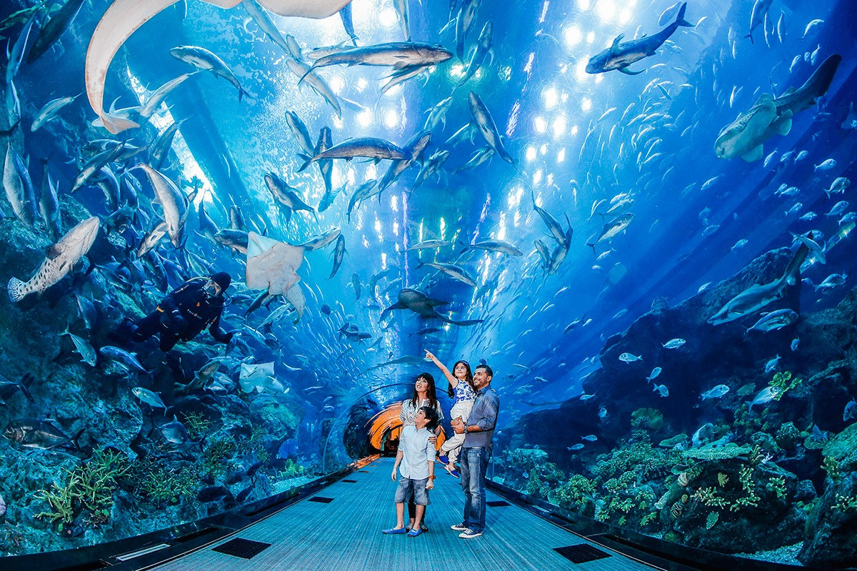 DUBAI AQUARIUM & UNDERWATER ZOO High-tech marine family attraction