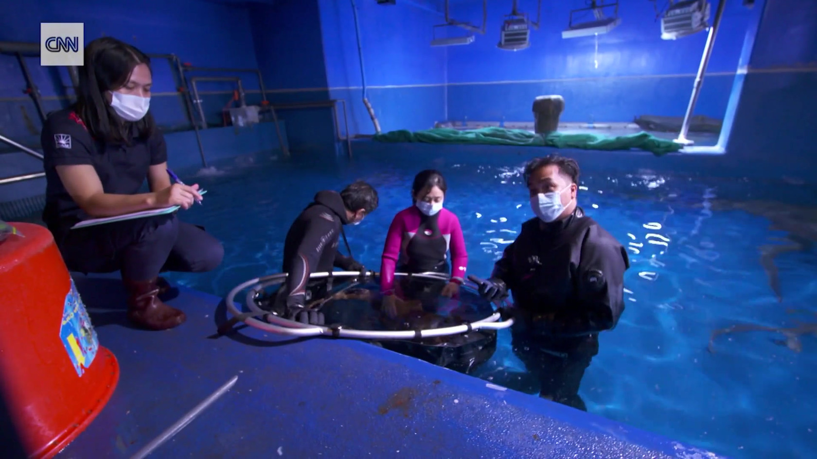 Swimming inside the Dubai Aquarium - CNN Video