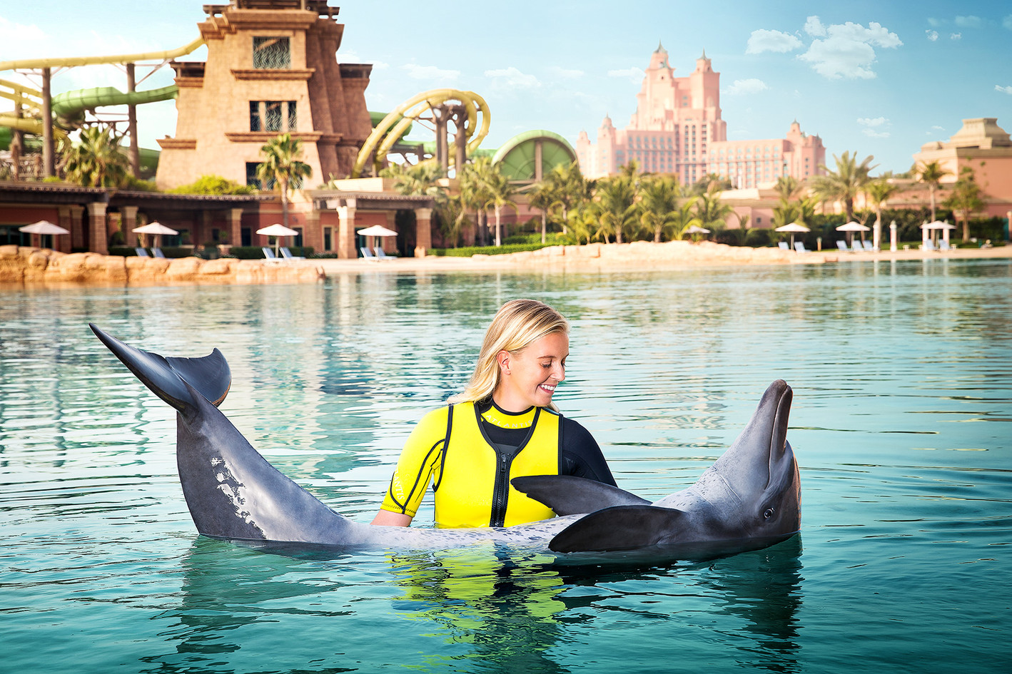 DUBAI DOLPHIN BAY Dolphin encounters & diving in a lagoon